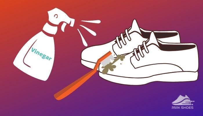 vinegar-to-make-mesh-shoes-dirt-free